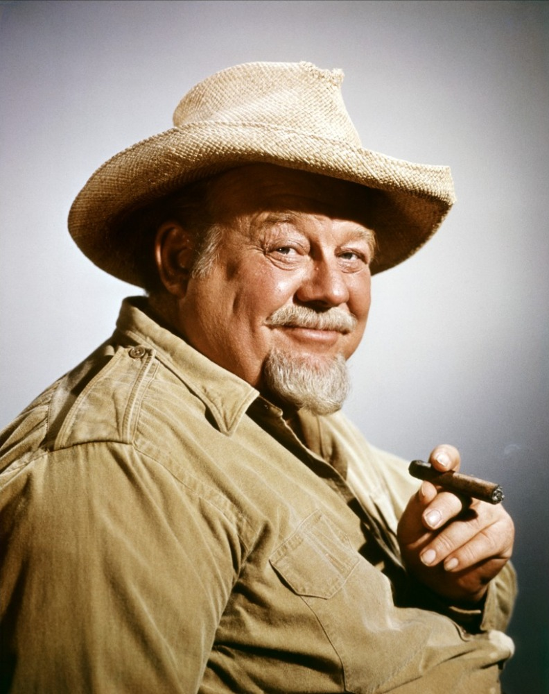 BURL IVES - HOLIDAY SONGS 1002