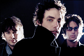THE WALLFLOWERS 1001