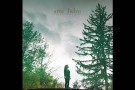 "Amy Helm - ""This Too Shall Light"" (Official Audio)"