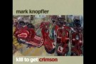 Mark Knopfler - Punish the Monkey + lyrics