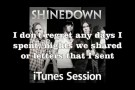 Shinedown - If You Only Knew (Acoustic iTunes Session) (with lyrics on screen)