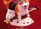 Corgi - The Queens Corgi